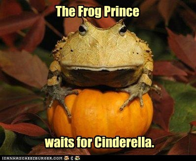The Frog Prince waits for Cinderella.