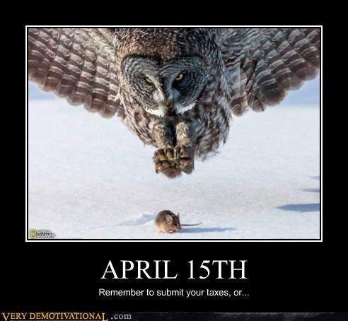 IRS taxes april 15 Owl - 7309579776