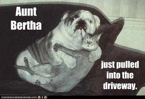 Aunt Bertha just pulled into the driveway.