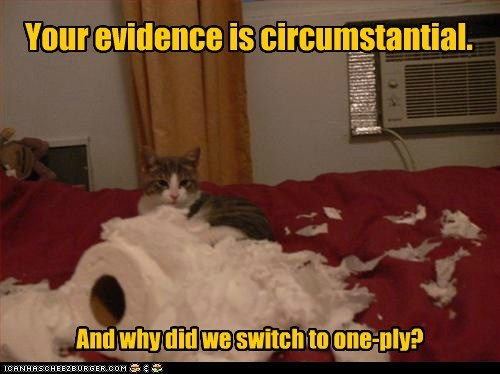 Two-Ply is Way More Fun! - Lolcats - lol | cat memes | funny cats ...