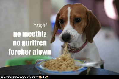 forever alone dogs spaghetti meatball - 7310143744