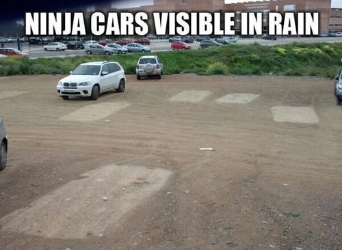 cars ninjas rain