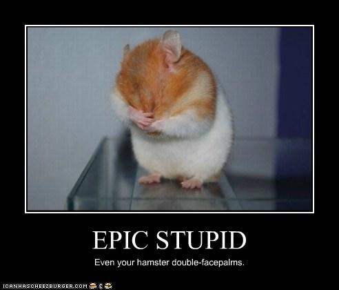 EPIC STUPID