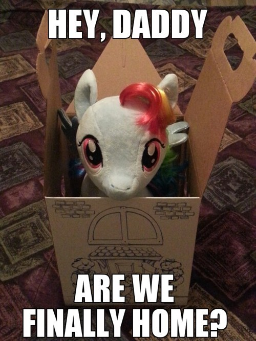 feels IRL build a bear rainbow dash - 7312562944