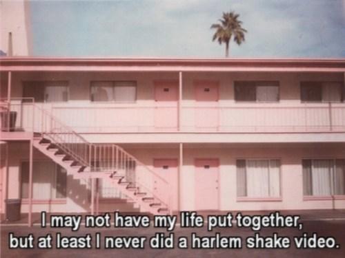 shame,hotels,harlem shake