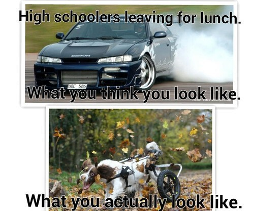lunch,driving,high school
