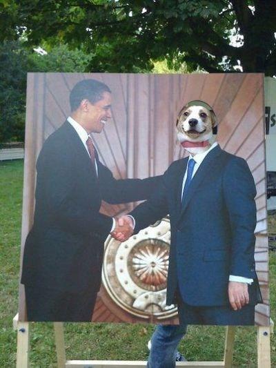 obama president politics - 7316212736