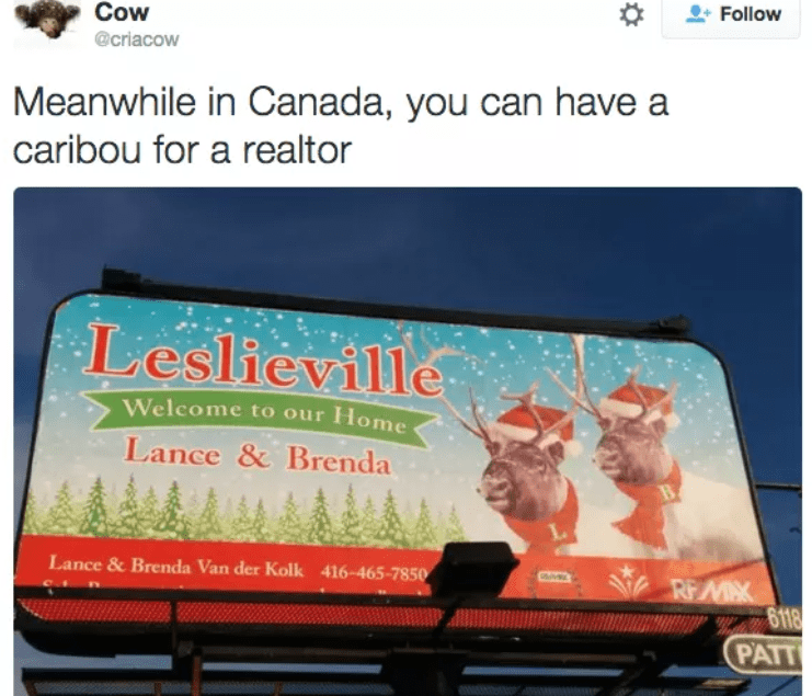 Canada wtf, meanwhile in Canada memes
