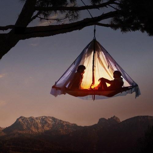 tent,treetop,lantern,camping