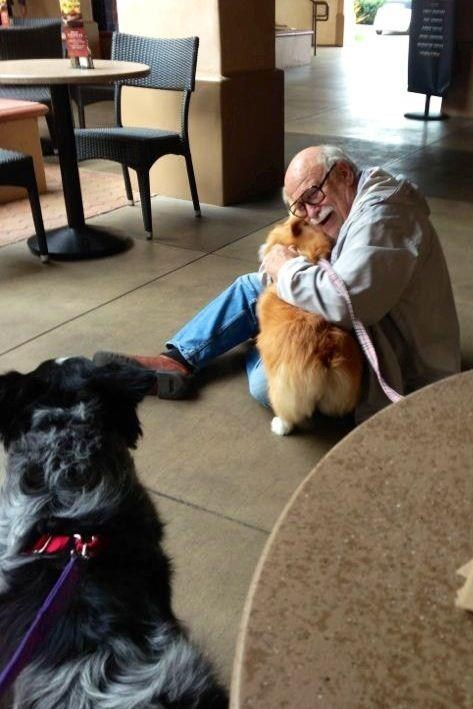 random act of kindness,dogs,warm and fuzzy,g rated,win