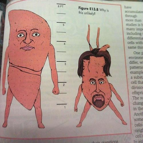 wtf books organs science - 7319107584