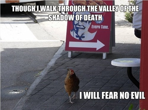 fear,chicken,IRL