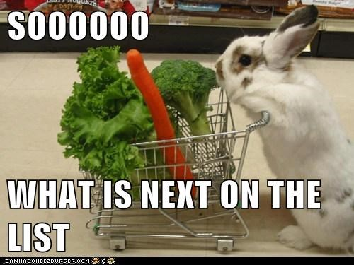 shopping,grocery,bunny