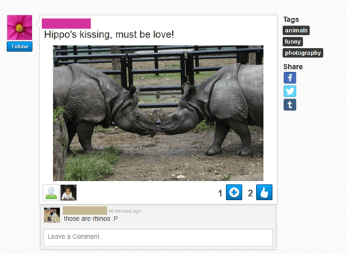 Hippo Luv!11!!!111!