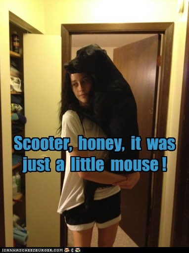 Scooter, honey, it was just a little mouse !
