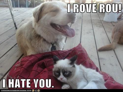 hate love Grumpy Cat - 7323928832