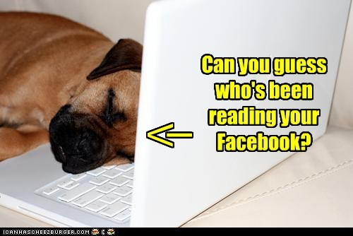 facebook sleep - 7328500992