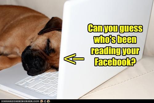 facebook sleep - 7328500992