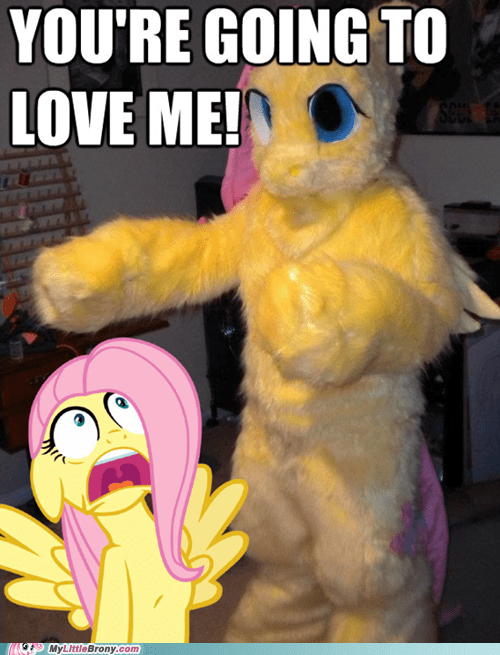 wtf cosplay i dont even costume fluttershy - 7328632832