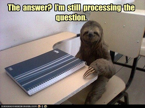 answer class sloth - 7331539712