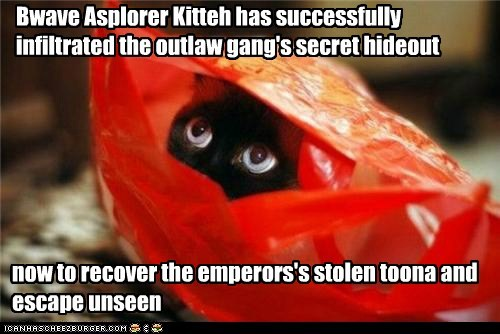Bwave Asplorer Kitteh has successfully infiltrated the outlaw gang's secret hideout now to recover the emperors's stolen toona and escape unseen