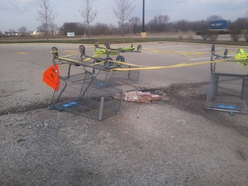 pothole,shopping carts,there I fixed it,g rated