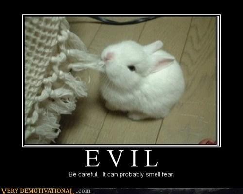 fear,evil,bunny