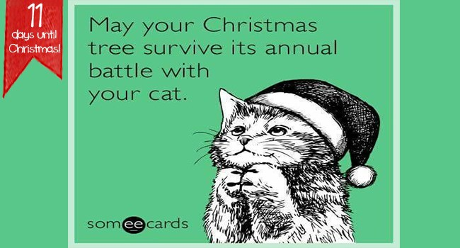 quotes christmas funny cards funny christmas ecards - 7339781