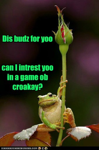 Dis budz for yoo can I intrest yoo in a game ob croakay?