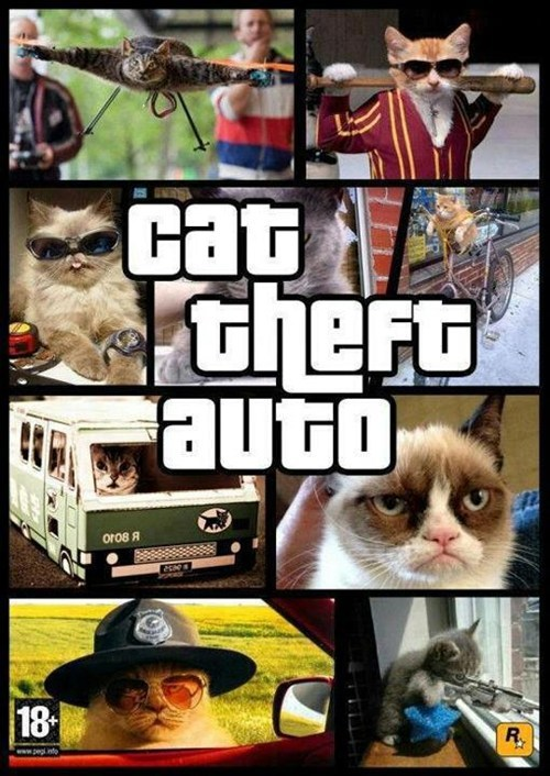 Grumpy Cat,Grand Theft Auto,video games,Cats,animals