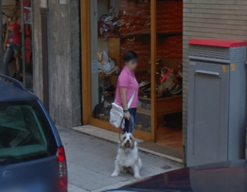 dogs caught by the google street view car