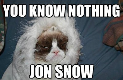 Game of Thrones you know nothing jon snow Grumpy Cat - 7340887040