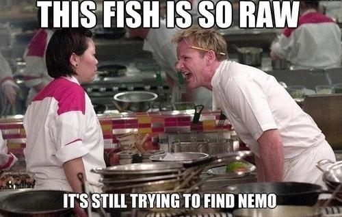 gordon ramsay fish finding nemo - 7340984064