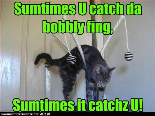 caught - 7341349888