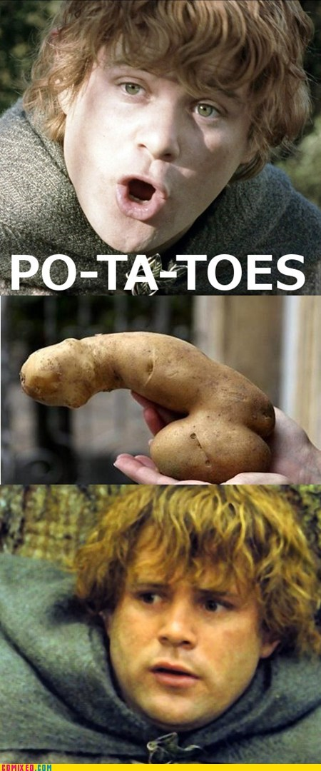 samwise,wtf,Lord of the Rings,no no tubes,potatoes
