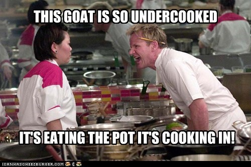 THIS GOAT IS SO UNDERCOOKED IT'S EATING THE POT IT'S COOKING IN!