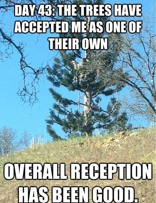 hilarious,trees,cell towers,reception