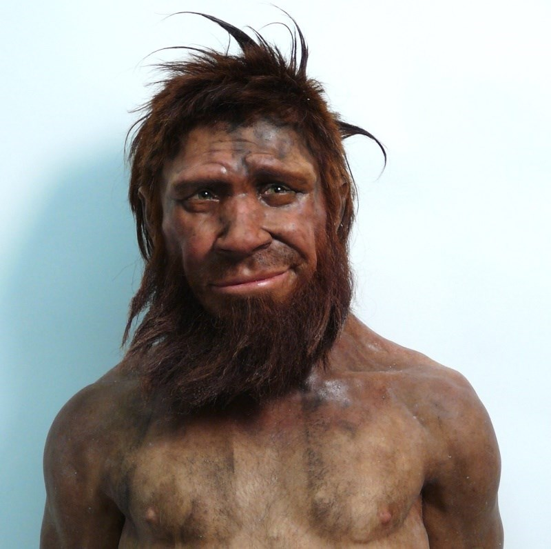 list photoshop photoshop battle neanderthal - 734469