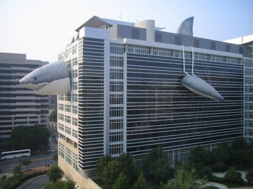 sharks buildings disguises - 7346104576
