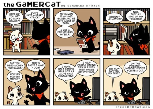 gamercat,comics,Cats