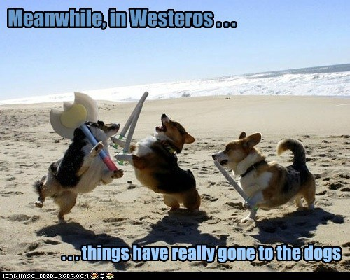 Game of Thrones corgi - 7346926592