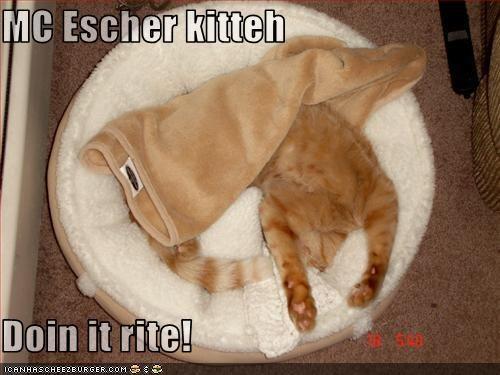 Cheezburger Image 734800128