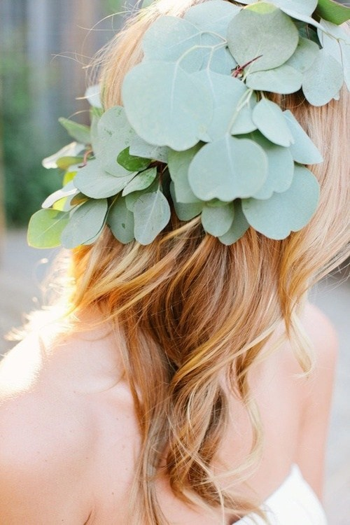 hair,leaves,eucalyptus