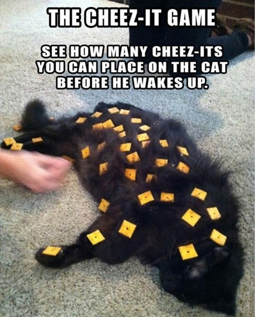cheez-it game Cats - 7348861440