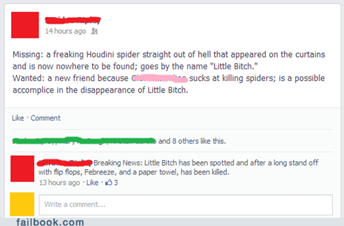 spiders,dead or alive,failbook