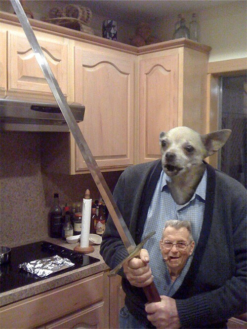 dogs wtf old guy swords - 7349103360