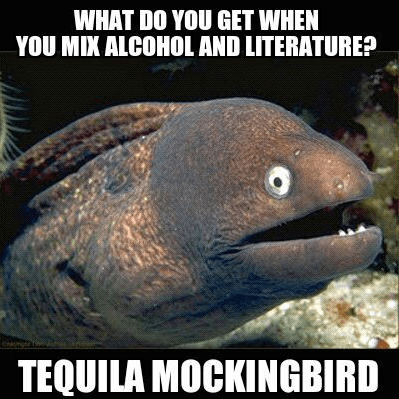 pun,To Kill A Mockingbird,tequila,g rated,School of FAIL