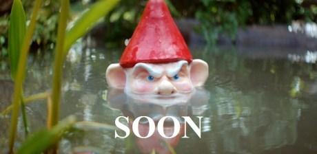 SOON gnomes - 7349327616