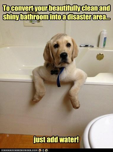 bath cute - 7349387520