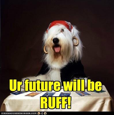 fortune telling,pun